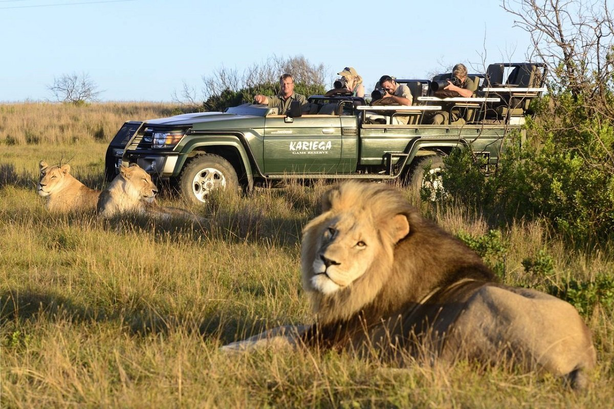 https://www.africasafari.co.uk/wp-content/uploads/2014/12/Dag-7a-Morgensafari-i-Kariega.jpg
