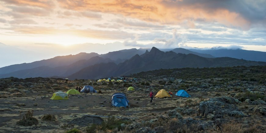 Camp on the Shira Route